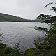 長野 白駒の池